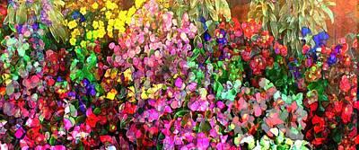 Floral Basket 1  2.4 To 1 Aspect Ratio Art Print
