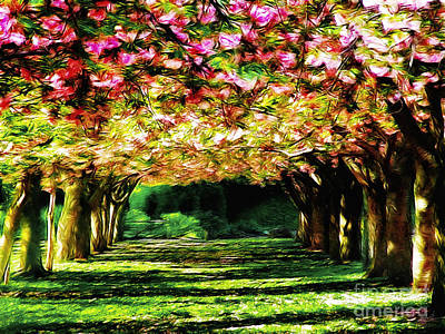 Cherry Blossoms Road Photograph - Floral Canopy by Nishanth Gopinathan