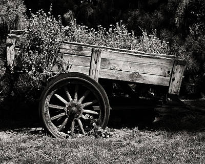 Wagon Wheels Digital Art - Floral Cart by Camille Lopez