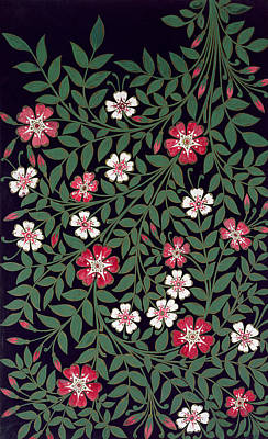 Black Background Painting - Floral Design by Owen Jones