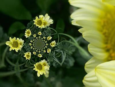 Digital Art - Floral Digi Manip 12 by Gene Cyr