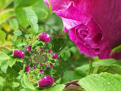 Digital Art - Floral Digi Manip 13 by Gene Cyr