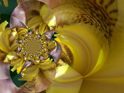 Digital Art - Floral Digi Manip 14 by Gene Cyr