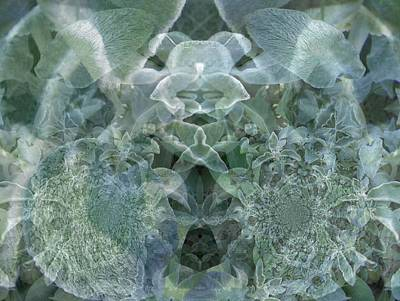 Digital Art - Floral Digi Manip 19 by Gene Cyr
