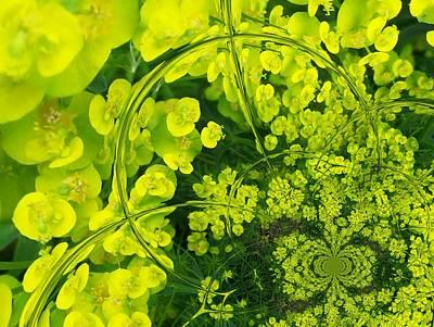 Digital Art - Floral Digi Manip 24 by Gene Cyr