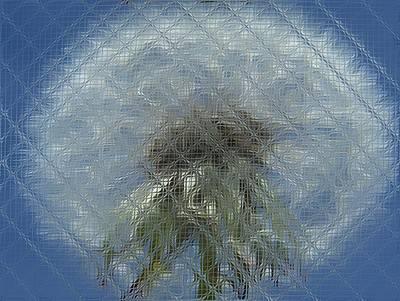 Digital Art - Floral Digi Manip 30 by Gene Cyr