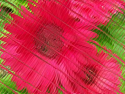 Digital Art - Floral Digi Manip 34 by Gene Cyr