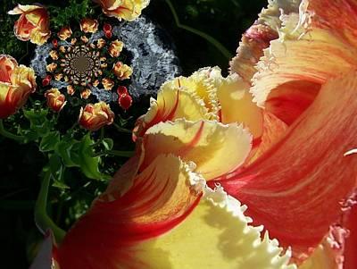 Digital Art - Floral Digi Manip 39 by Gene Cyr