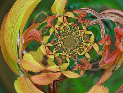 Digital Art - Floral Digi Manip 6 by Gene Cyr