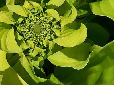 Digital Art - Floral Digi Manip 7 by Gene Cyr