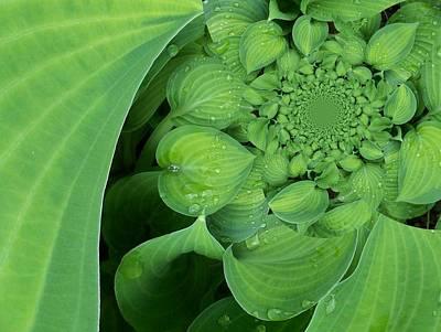Digital Art - Floral Digi Manip 9 by Gene Cyr