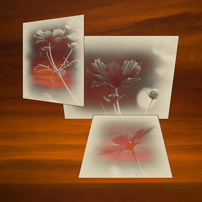 Digital Art - Floral Early Garden Light 02 by Thomas Woolworth
