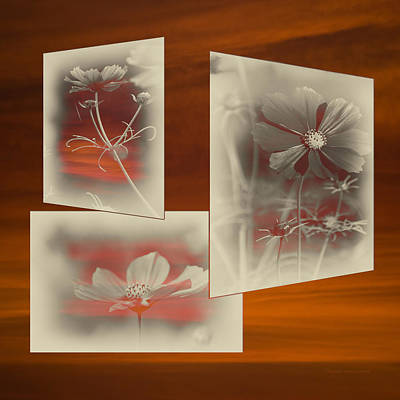 Digital Art - Floral Early Garden Light 03 by Thomas Woolworth
