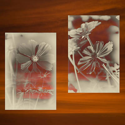 Digital Art - Floral Early Garden Light 07 by Thomas Woolworth