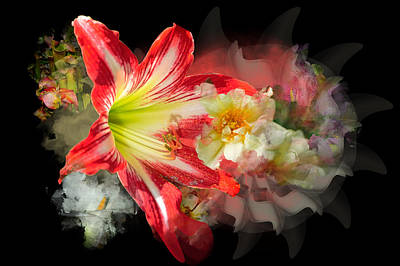 Digital Art - Floral Explosion by Davina Washington