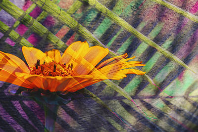 Composite Photograph - Floral Fantasy I by Barbara Smith