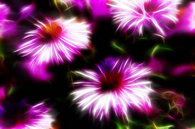 Art Print featuring the photograph Floral Fireworks by Selke Boris