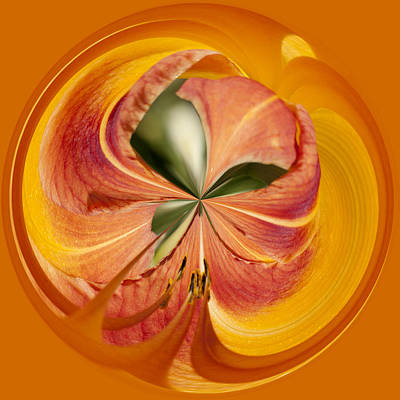 Photograph - Floral Orange Orb by Wes and Dotty Weber
