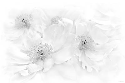 Photograph - Floral Peonies In Monochrome by Jennie Marie Schell