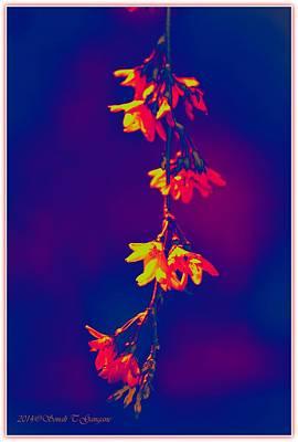 Caravaggio - Florets in Blue by Sonali Gangane