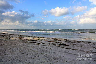 Florida Beach Day Art Print by Danielle Groenen
