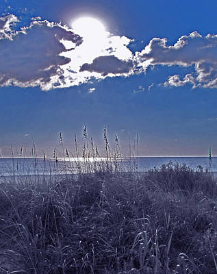 Photograph - Florida Blue by Ian  MacDonald