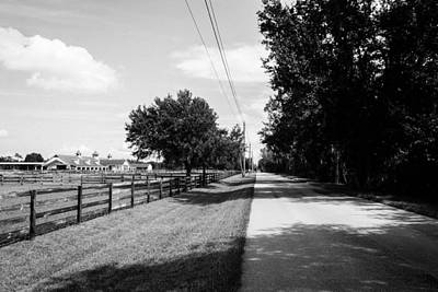 Photograph - Florida Country by Shannon Harrington