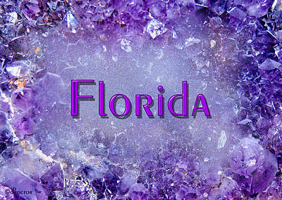 Mixed Media - Florida by Donna Proctor