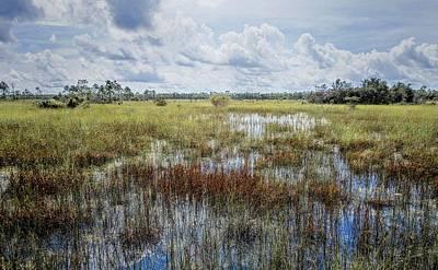florida Everglades 0177 Print by Rudy Umans