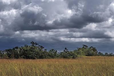 Photograph - Florida Everglades 0184 by Rudy Umans