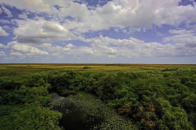Lili Photograph - Florida Everglades View by Manuel Lopez