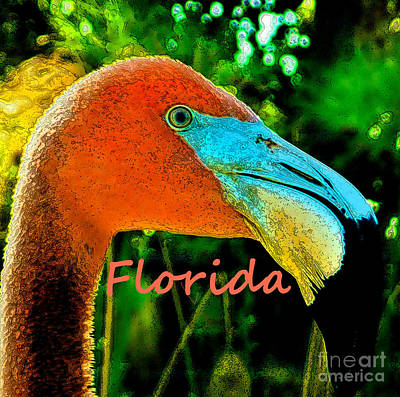 Florida Flamingo Art Print