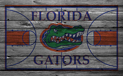 Florida Gators Art Print by Joe Hamilton