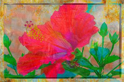 Photograph - Florida Hibiscus Gold by Alice Gipson