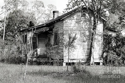 Florida Cracker Photograph - Florida Homestead  by Rick Mann