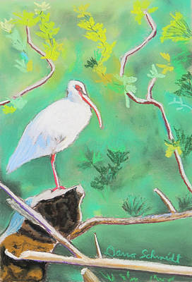 Painting - Florida Ibis On Central Fl Waterway by Dana Schmidt