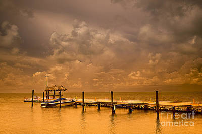 Florida Keys Art Print by Bruce Bain