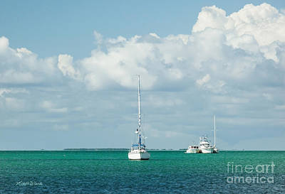 Photograph - Florida Keys Livin by Michelle Wiarda-Constantine