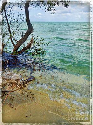 Florida Keys Tropical Island Art Print by Joan  Minchak