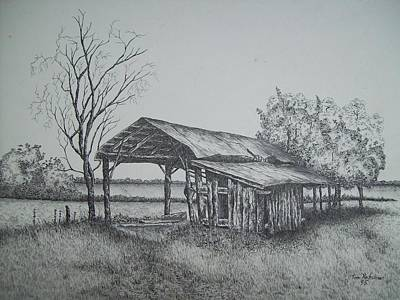 Shed Drawing - Florida Old Shed by Tom Rechsteiner
