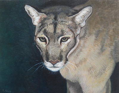 Florida Panther Art Print by Sharon Guy