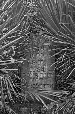 Photograph - Florida Pioneer Tombstone by Chris  Kusik