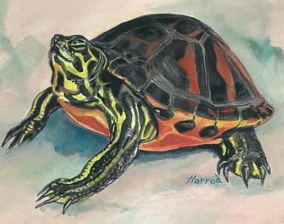 Slider Painting - Florida Red-bellied Slider by Karen Harrod