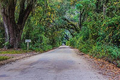 Photograph - Florida Road by Tom Culver
