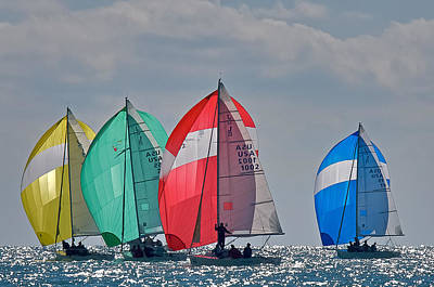 Photograph - Florida Spinnakers by Steven Lapkin