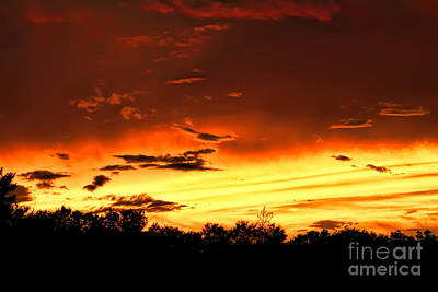 Photograph - Florida State Road 70 Sunset by Olga Hamilton