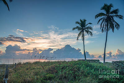 Vintage Signs - Florida sunrise by Paul Quinn