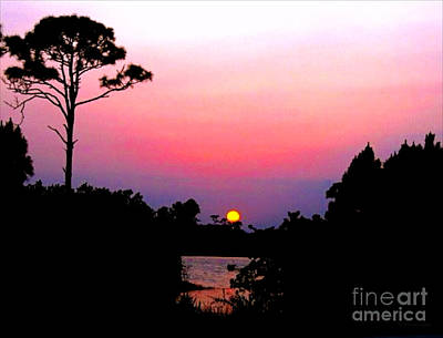 Photograph - Florida Sunset by Anita Lewis