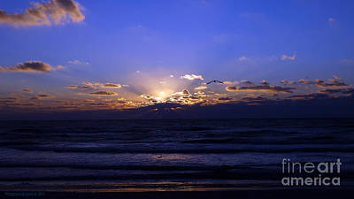 Photograph - Florida Sunset Beyond The Ocean  II by Gena Weiser