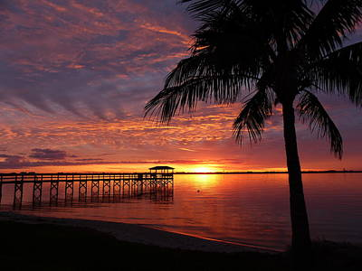Photograph - Florida Sunset by Elaine Franklin